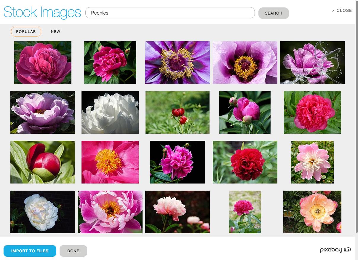 Browsing free stock images within yola