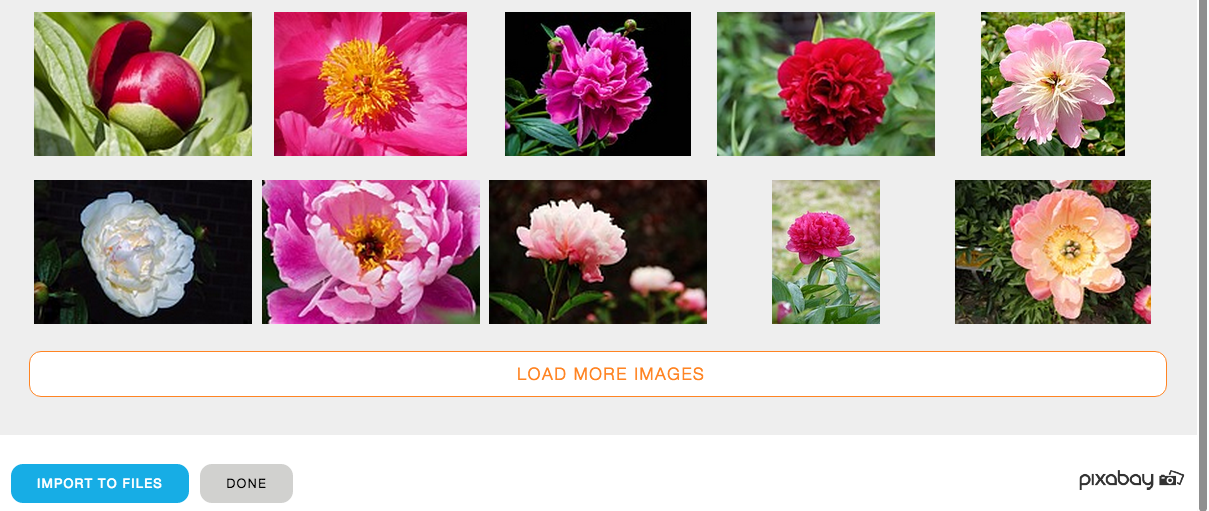 Loading more Yola free stock images